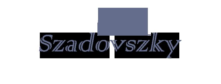 home renovation Budapest